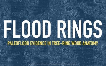 flood-rings